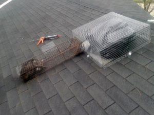Animal Proofing Of Roof Vents, Wildlife Barrier Installation Services For Sheds, Porches And Decks In Ohio