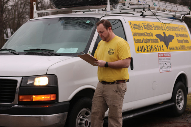 The Cottom's Wildlife Removal Company Provides Bat Removal, Bat Exclusion, Bat Guano Cleanup And Decontamination Services To Families That Live In And Near Columbus Ohio And Other Central Ohio Cities