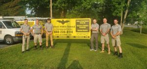 CWR Removes Wildlife And Disinfects Houses, Attics And Buildings For Cleveland, Columbus & Cincinnati Ohio Homeowners And Businesses