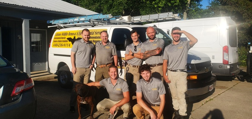 June 30 2021 - Pictured Here Are 7 Specially Trained Bat Removal Professionals From The CWR Bat Removal Service Of Ohio - Back Row, From Left To Right Are Mike Cottom Jr, Mike Cottom Sr, Alex Svensen, Jason Neitenbach and Nathan Lang. Front Row, From Left To Right Are CRW's mascot dog Hendrix, Tyler Phillips and Kyle Fortune. These professional, licensed and certified bat control experts provide humane bat removal services to Ohio homeowners and Ohio businesses that safely solve bat problems, exclude bats from attics, eliminate bat infestations and get rid of bats in attics and walls that have become pests.