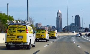 PICTURED HERE ARE 3 CWR WILDLIFE SERVICE VEHICLES APPROACHING DOWNTOWN CLEVELAND OHIO - The City Of Cleveland Animal Control Services and the Cottom's Wildlife Removal company both manage human-wildlife conflicts in the Northeast Ohio community. Pictured here are 3 of CRW's pest control trucks on the highway heading to a large wildlife trapping, removal and exclusion project for a concerned commercial client.