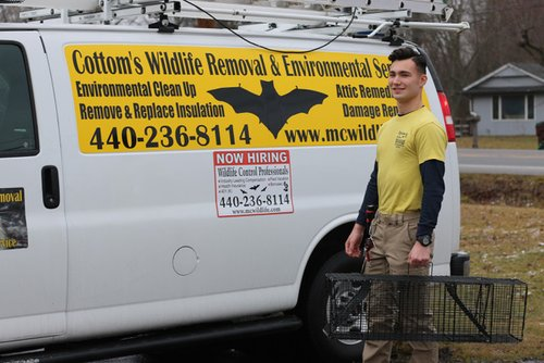 PICTURED HERE IS ALEX, A WILDLIFE TRAPPER AT COTTOMS WILDLIFE REMOVAL COMPANY - Alex believes that trapping nuisance wild animals can be an effective method of reducing the spread of harmful diseases while also managing and controlling damage caused by the wildlife in Ohio.