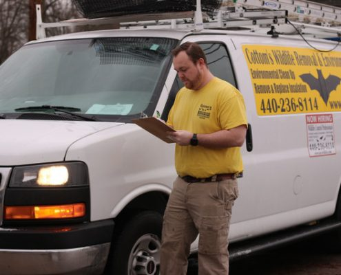 PICTURED HERE IS PROFESSIONAL BAT CONTROL TECHNICIAN, MIKE COTTOM, JR. ON A SERVICE CALL TO A CUSTOMER'S HOUSE IN OHIO - The Cottom's Wildlife Removal Company Provides Bat Removal, Bat Exclusion, Bat Guano Cleanup And Decontamination Services To Families That Live In And Near Columbus, Cleveland, Cincinnati And Other Ohio Cities. Mike Jr. is a very knowledgeable and professional bird control technician.