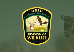 Visit The Website For The Ohio Department Of Natural Resources - Department Of Wildlife. The government agency in Ohio, ensures a balance between wise use and protection of our natural resources for the benefit of all. The Department of Natural Resources (ODNR) owns and manages more than 590,000 acres of land including 74 state parks, 21 state forests, 136 state nature preserves, and 117 wildlife areas. The department also has jurisdiction over more than 120,000 acres of inland waters; 7,000 miles of streams; 481 miles of Ohio River; and 2-1/4 million acres of Lake Erie.