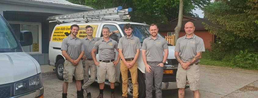 Wildlife Careers, Jobs And Employment Opportunities In Ohio Are Available At Cottom's Wildlife Removal & Environmental Service - June 17, 2021