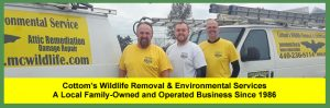 Contact Cottom's Wildlife Removal, A Family Owned and Operated Business in Cleveland, Ohio