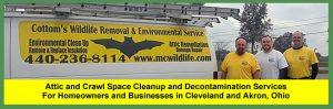 Attic and Crawl Space Cleanup and Decontamination Services For Homeowners and Businesses in Cleveland and Akron, Ohio