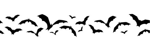 What You Need To Know About Bat Removal - install a batcone -fill cracks in roof with silicone caulk - screen attic vents - spray enzyme odor removers- install new insulation - install bat house