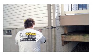 Mike Cottom Repairing Damage Caused by Wildlife