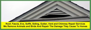 Roof, Soffit, Fascia, Gutter, Eve, Siding, Vent, Fan and Chimney Repair Services for Homeowners in Cleveland and Akron.