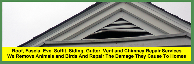 Roof, Eve, Soffit and Vent Repair Services in Cleveland